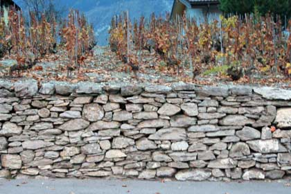 mur-pierre seche vigne